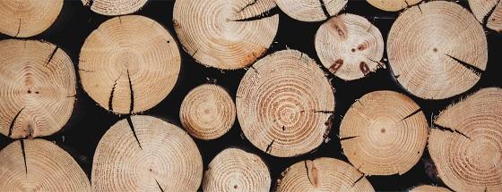 Feinstaub durch Holzverbrennung