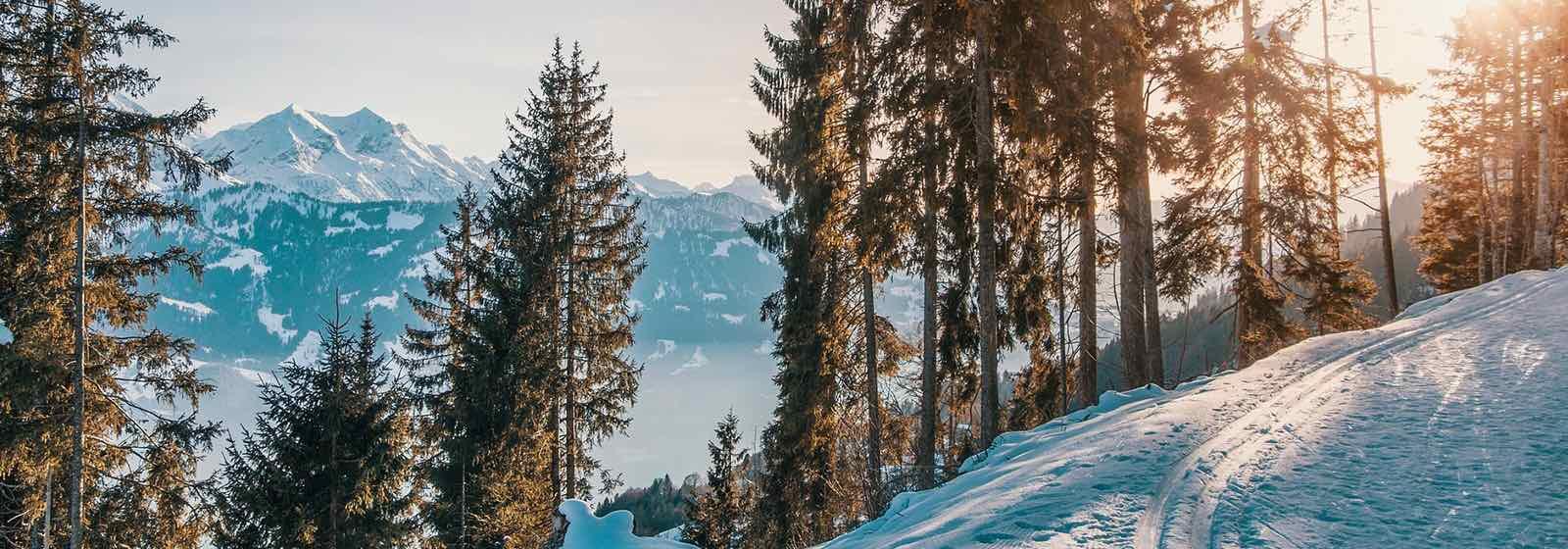 KWL im Winter